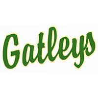 logo 11 gatleys